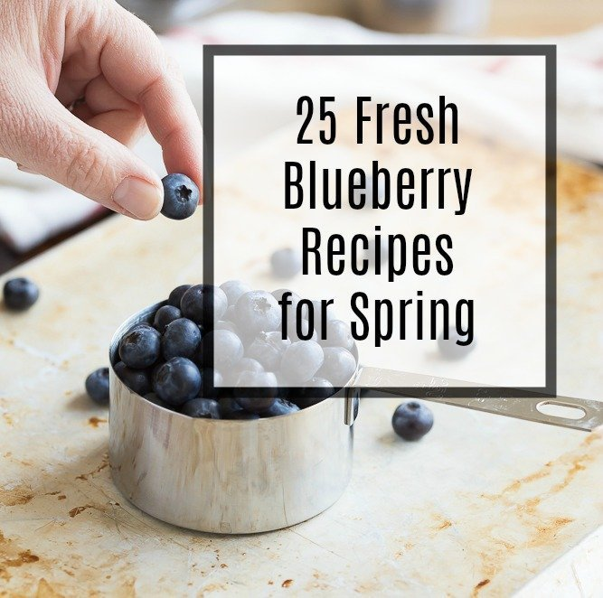 Get ready for blueberry season by drooling over this collection of 25 Fresh Blueberry Recipes just bursting with juicy, seasonal berries. Recipes include desserts, breakfast ideas, savory dishes, drinks, and even ones featuring our favorite flavor combo- lemon blueberry!